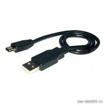Amzer Mini USB Data Sync and Charge Cable - 1ft