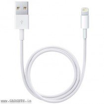 Apple Lightning to USB Cable 0.5m (White) - ME291ZM/A