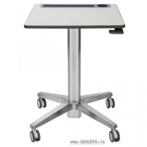 ERGOTRON LearnFit Adjustable Standing Desk (24-481-003)
